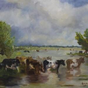 Polderlandschap met koeien | 1998 | Olieverf op doek | 50x60 cm
